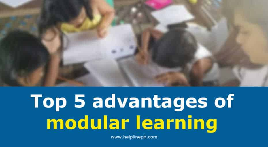 advantages of modular learning